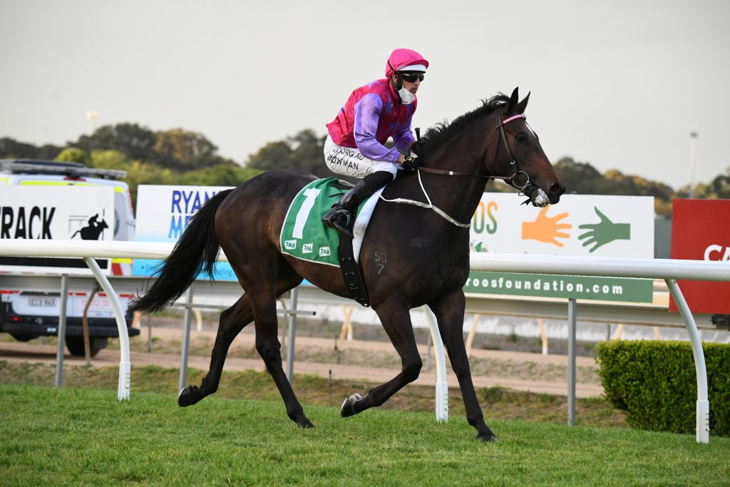 STARS OF THE FUTURE ON SHOW AT WYONG 7