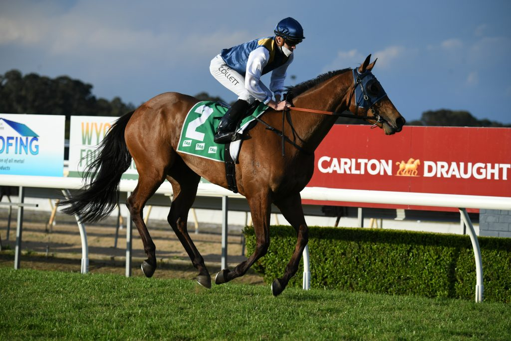 FOUR PILLARS CANDIDATES ON SHOW AT WYONG 4
