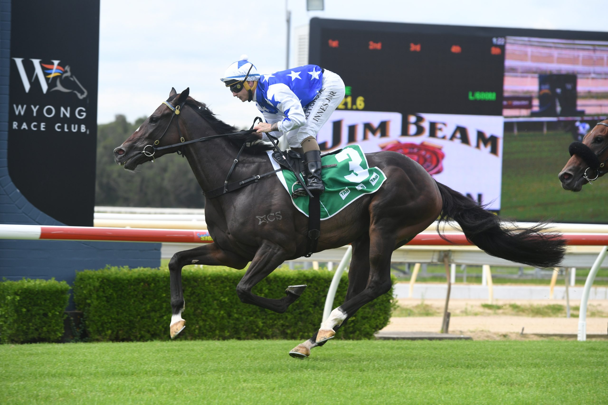 RYAN AND ALEXIOU DOMINATE WYONG 8