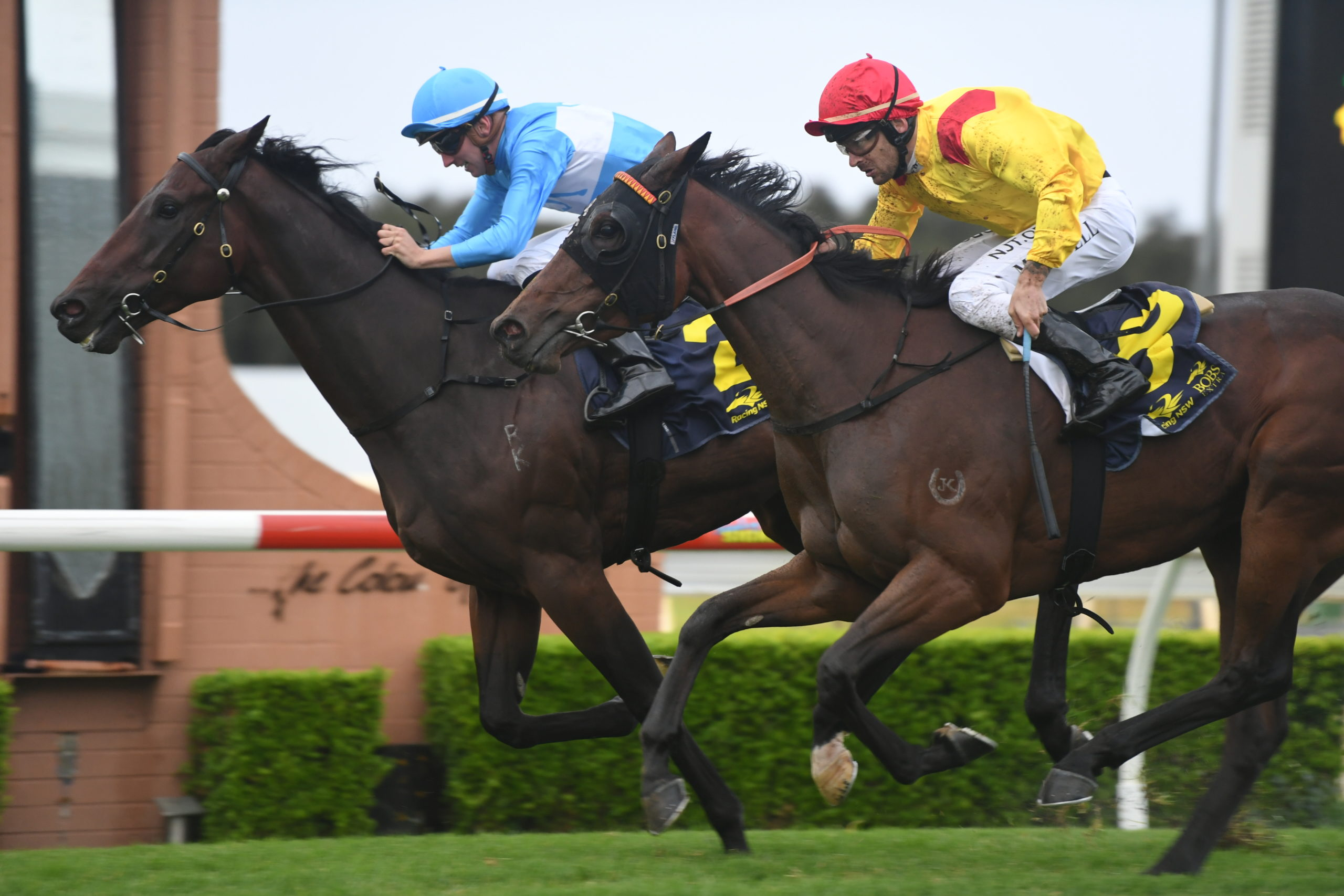 REINVEST EARNS TRIP TO QUEENSLAND 1