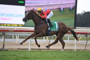 Fran O'Shea's Racing Previews 3