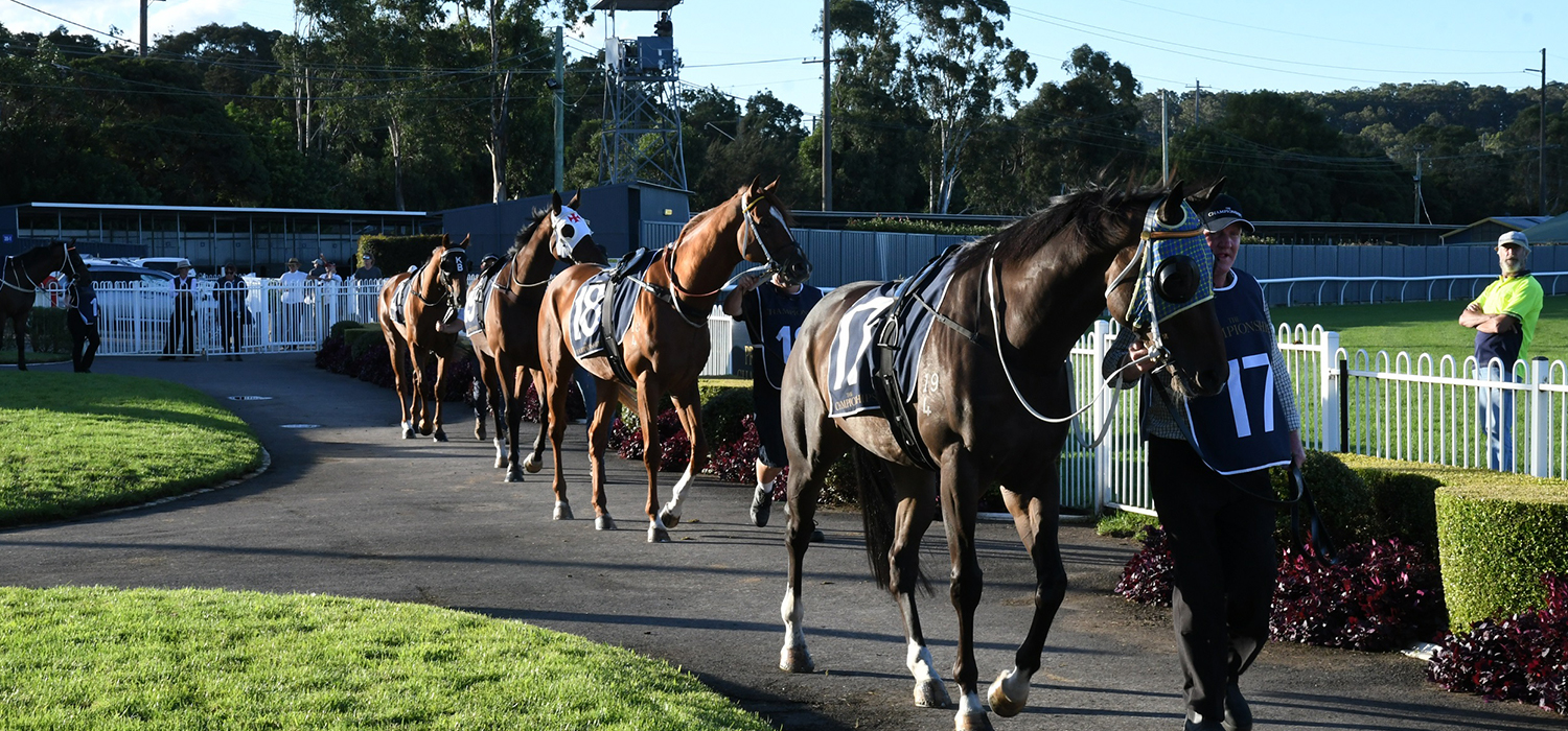June News 2019 - Wyong Race Club 1